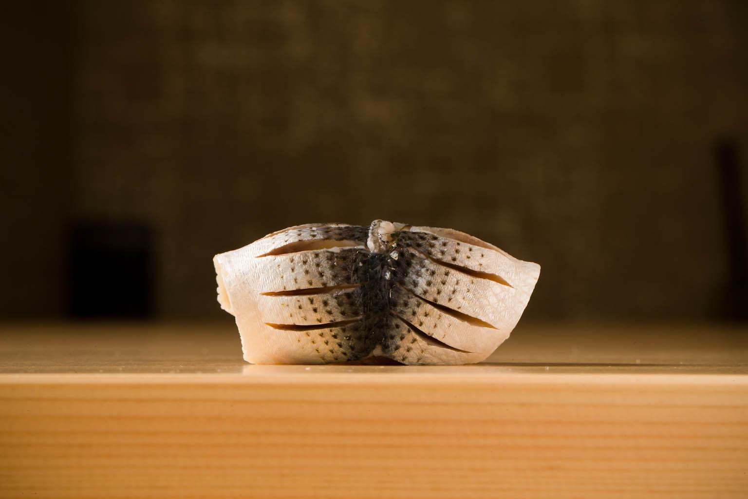 Hatano Yoshiki gallery #1